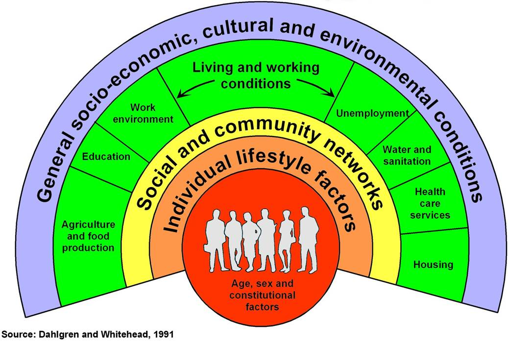 promoting population health Policy, systems, and environment approaches to population health and well-being.